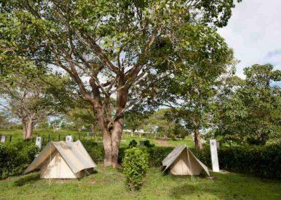 Zona de camping es recomendada para quienes prefieran quedarse a descansar en todo el centro de Hacienda Nápoles, frente al lago, y en ambiente natural