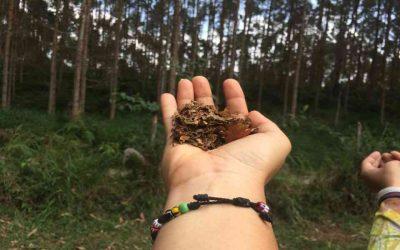 La siembra, nuestro compromiso natural